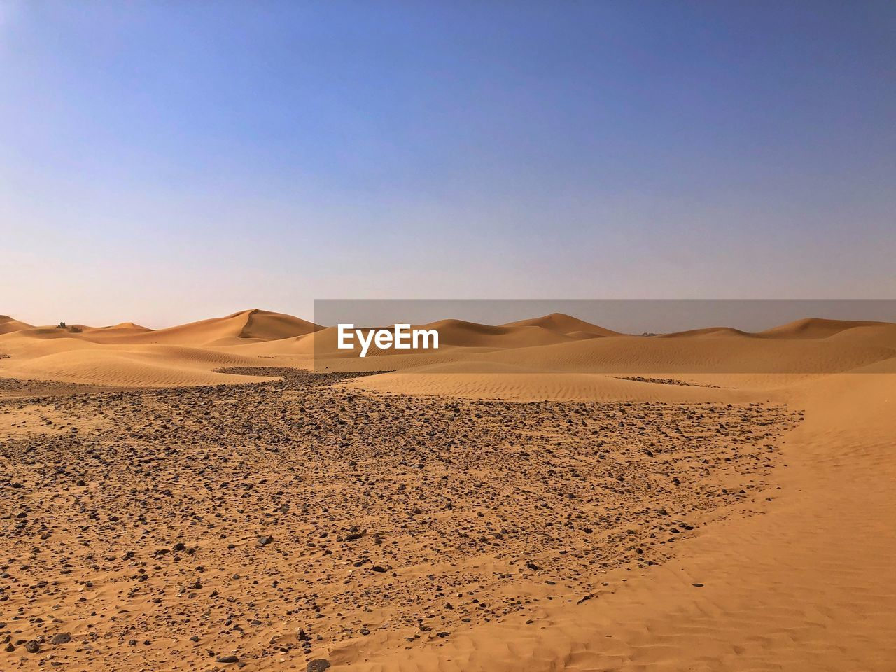 desert, scenics - nature, climate, arid climate, landscape, sky, environment, tranquil scene, sand, land, tranquility, beauty in nature, sand dune, non-urban scene, remote, clear sky, nature, copy space, extreme terrain, barren, no people, outdoors, atmospheric