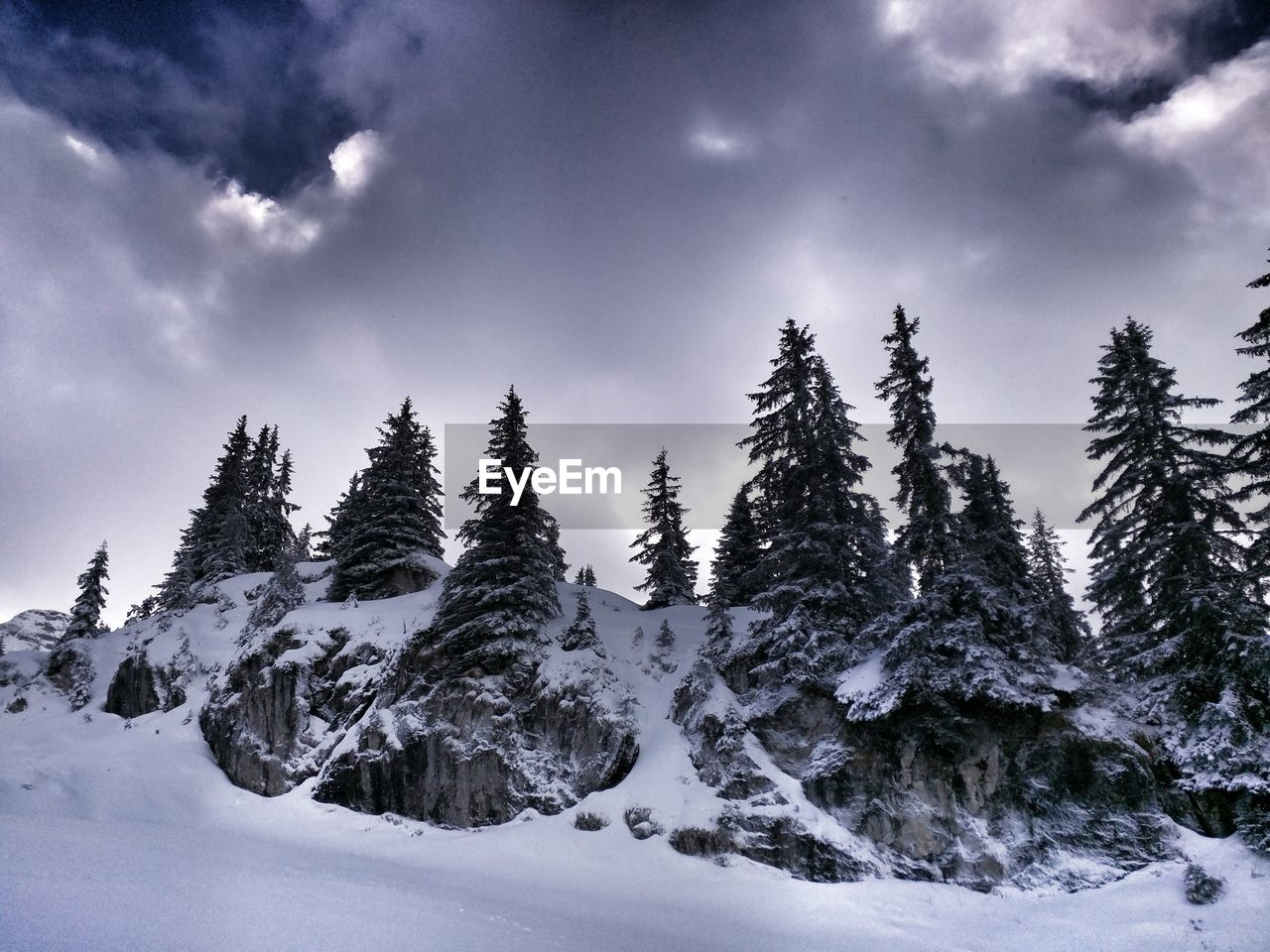 snow, winter, cold temperature, nature, tranquil scene, beauty in nature, tranquility, weather, sky, no people, scenics, tree, outdoors, mountain, day