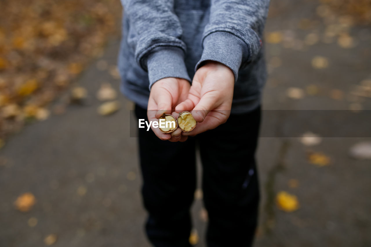 Low section of woman holding chestnut on road