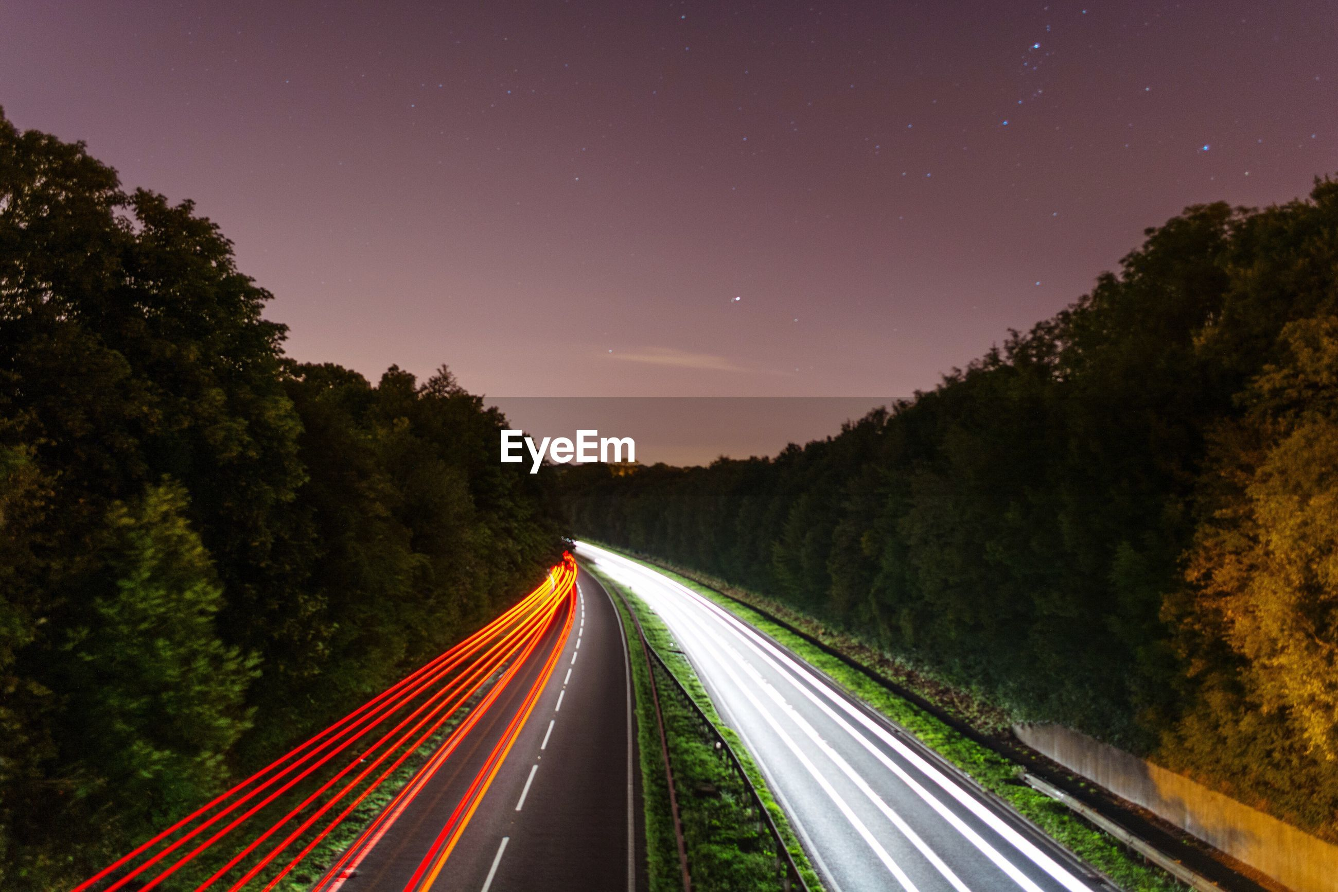 Light trails on road by trees against sky at night