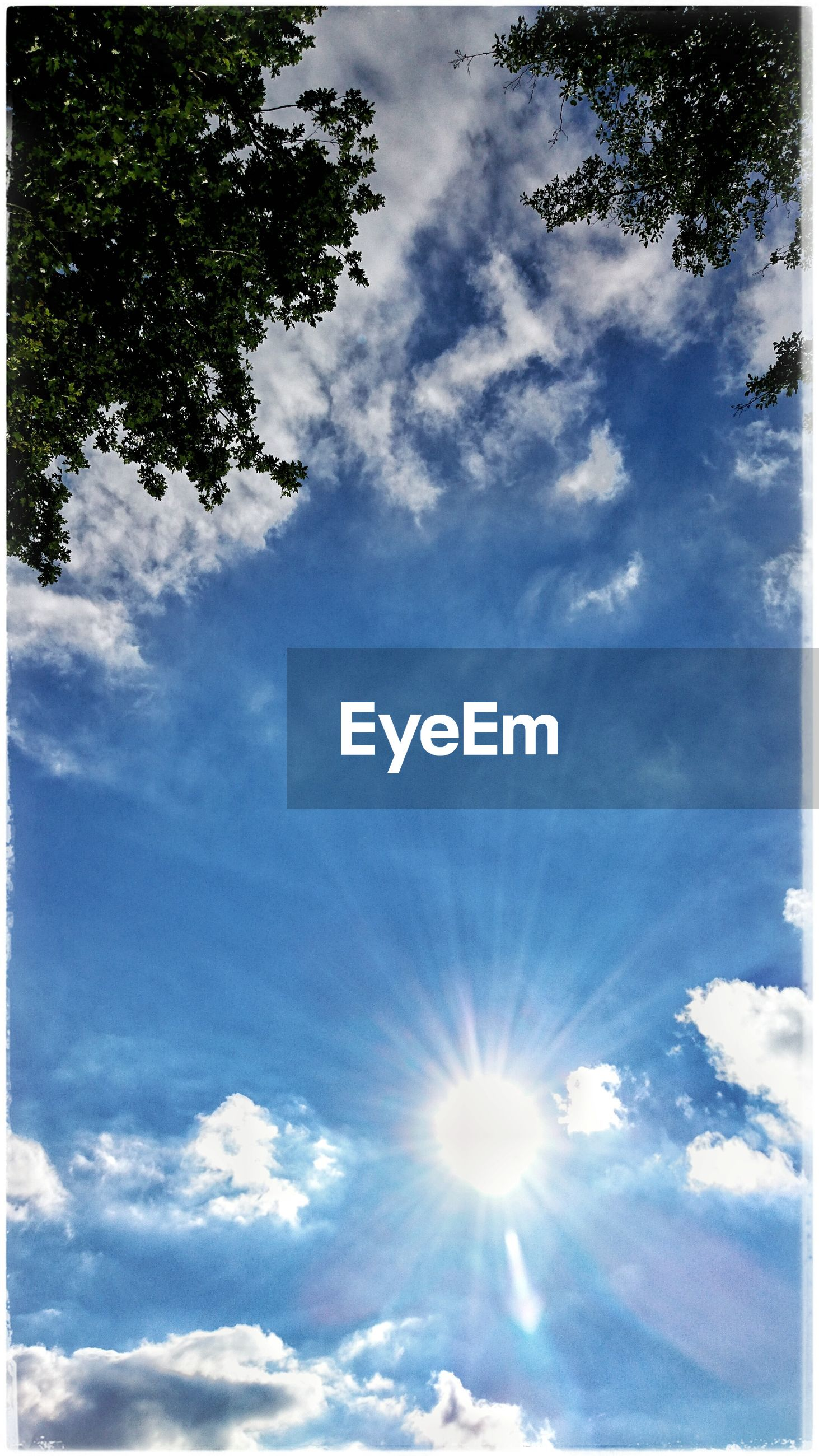low angle view, sky, sun, cloud - sky, sunbeam, sunlight, tree, beauty in nature, nature, cloud, tranquility, blue, lens flare, cloudy, scenics, day, outdoors, tranquil scene, no people, sunny, bright, idyllic, growth