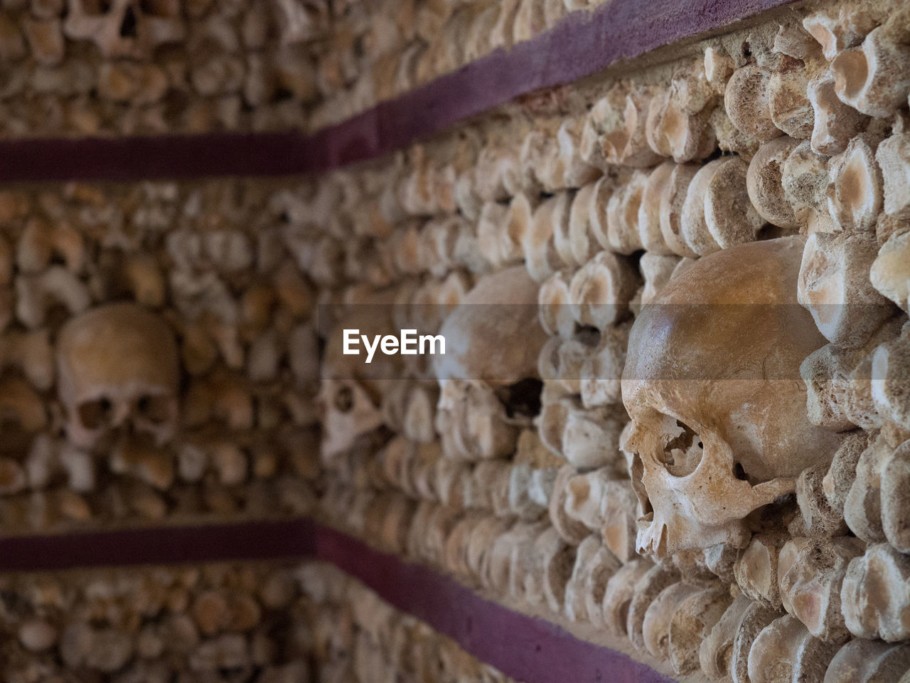 built structure, religion, spirituality, belief, history, architecture, no people, the past, building, place of worship, indoors, human skeleton, creativity, close-up, art and craft, wall - building feature, representation, stone material