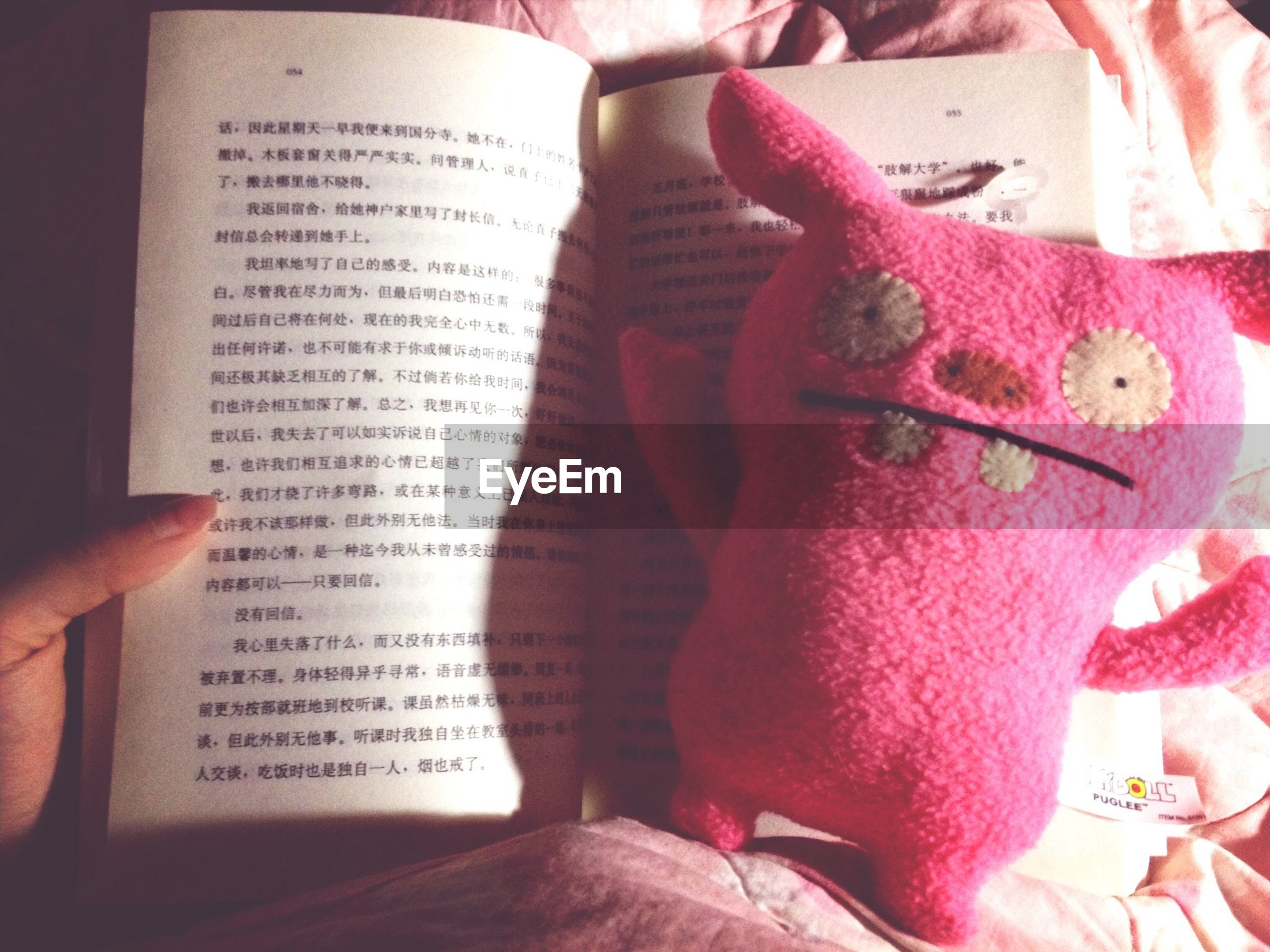 indoors, person, text, close-up, book, communication, western script, part of, one person, high angle view, paper, holding, human finger, still life, table, art and craft, cropped, art, creativity