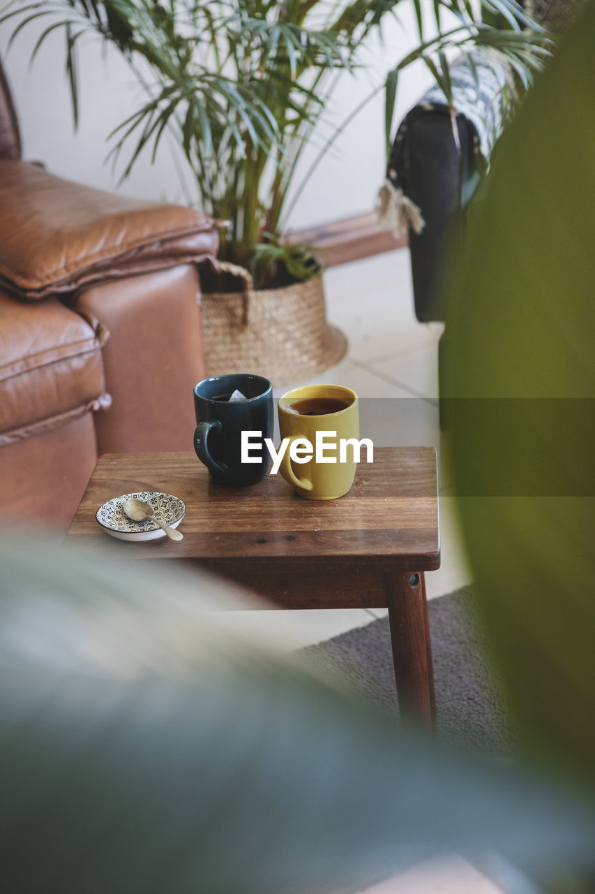table, food and drink, cup, drink, selective focus, plant, mug, coffee cup, indoors, refreshment, no people, potted plant, food, still life, nature, wood - material, day, hot drink, tea, crockery, tea cup