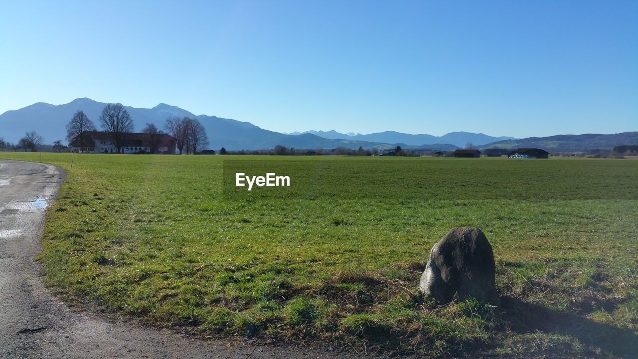 field, landscape, mountain, no people, nature, outdoors, day, grass, clear sky, animal themes, one animal, mammal, scenics, domestic animals, mountain range, sky, beauty in nature