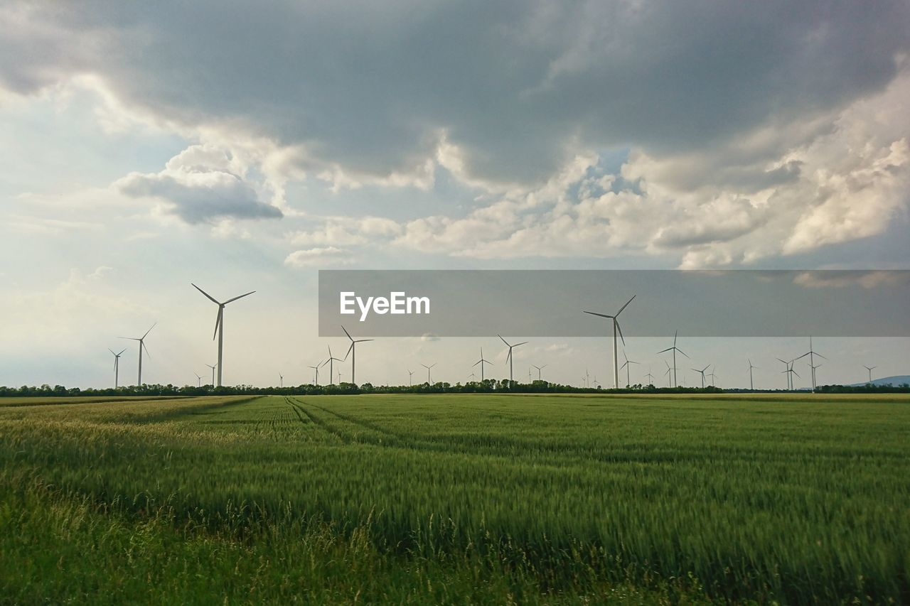 environment, fuel and power generation, environmental conservation, wind turbine, turbine, landscape, field, renewable energy, alternative energy, wind power, sky, cloud - sky, land, rural scene, scenics - nature, nature, beauty in nature, agriculture, green color, grass, outdoors, sustainable resources