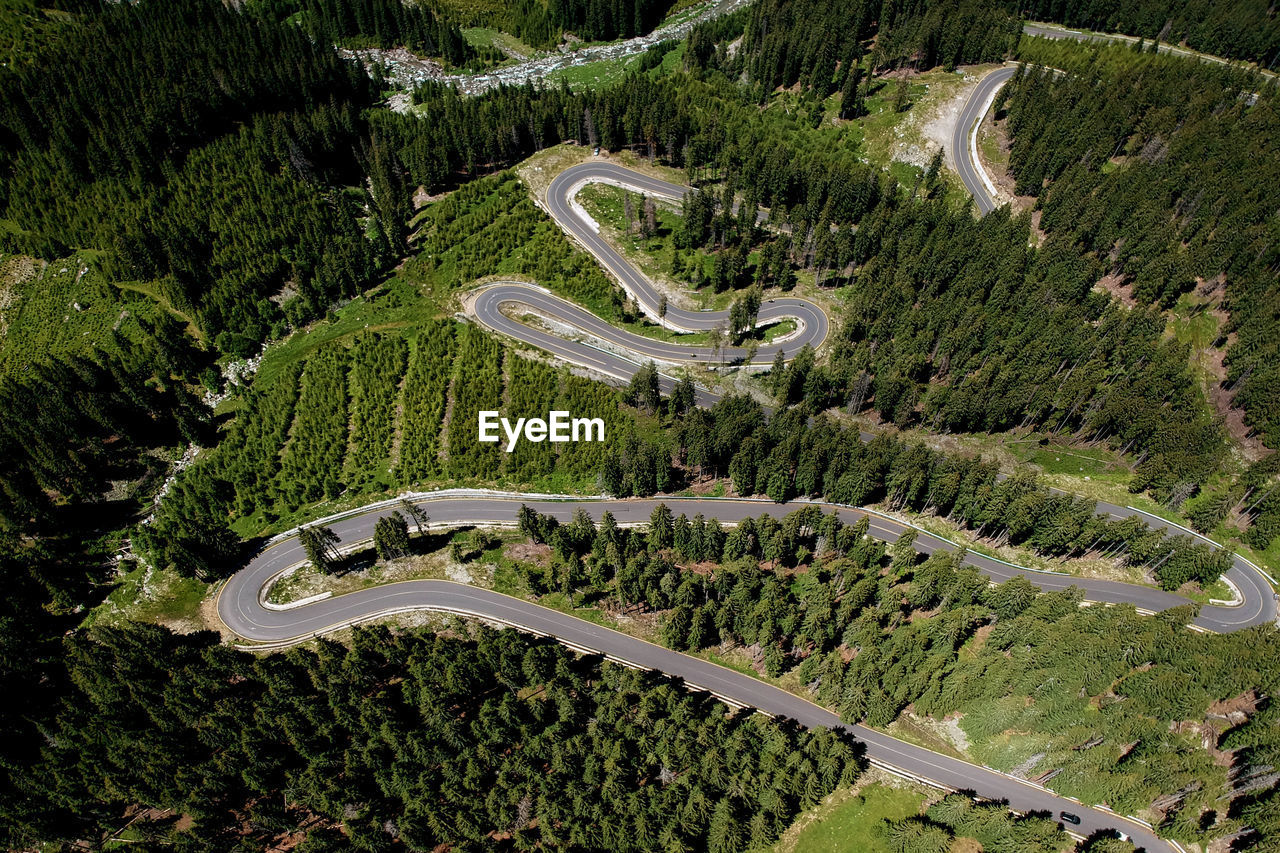 plant, tree, high angle view, aerial view, environment, green color, growth, scenics - nature, land, landscape, road, nature, day, non-urban scene, transportation, no people, outdoors, mountain, beauty in nature, mountain road