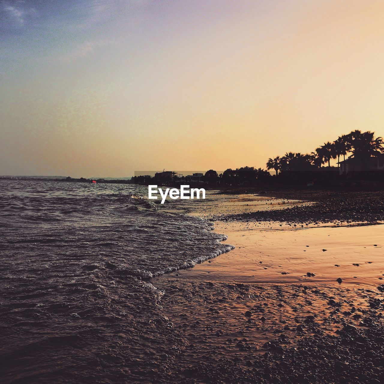 sky, water, sea, scenics - nature, beauty in nature, beach, land, tranquility, sunset, tranquil scene, nature, clear sky, no people, horizon, tree, copy space, idyllic, horizon over water, motion, outdoors