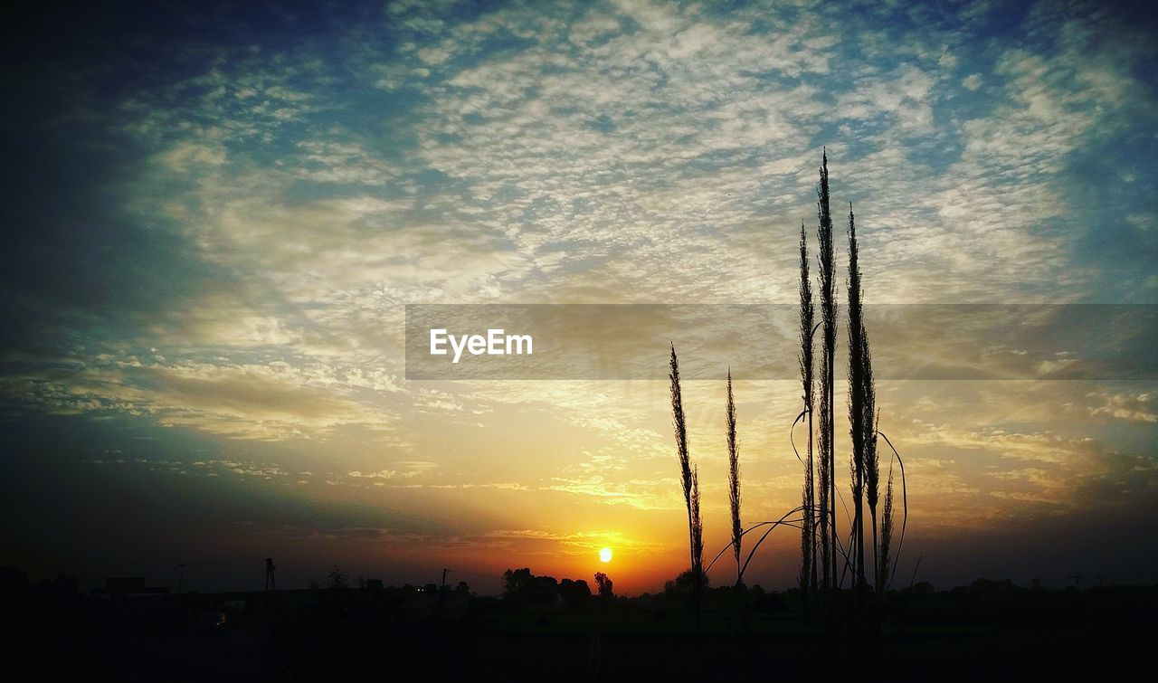 sunset, sky, silhouette, orange color, cloud - sky, nature, no people, outdoors, scenics, beauty in nature, landscape, day