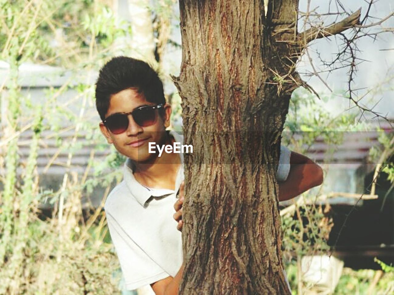 sunglasses, tree trunk, tree, one person, real people, leisure activity, day, young adult, outdoors, casual clothing, focus on foreground, lifestyles, young men, nature, standing, portrait, young women, close-up, people