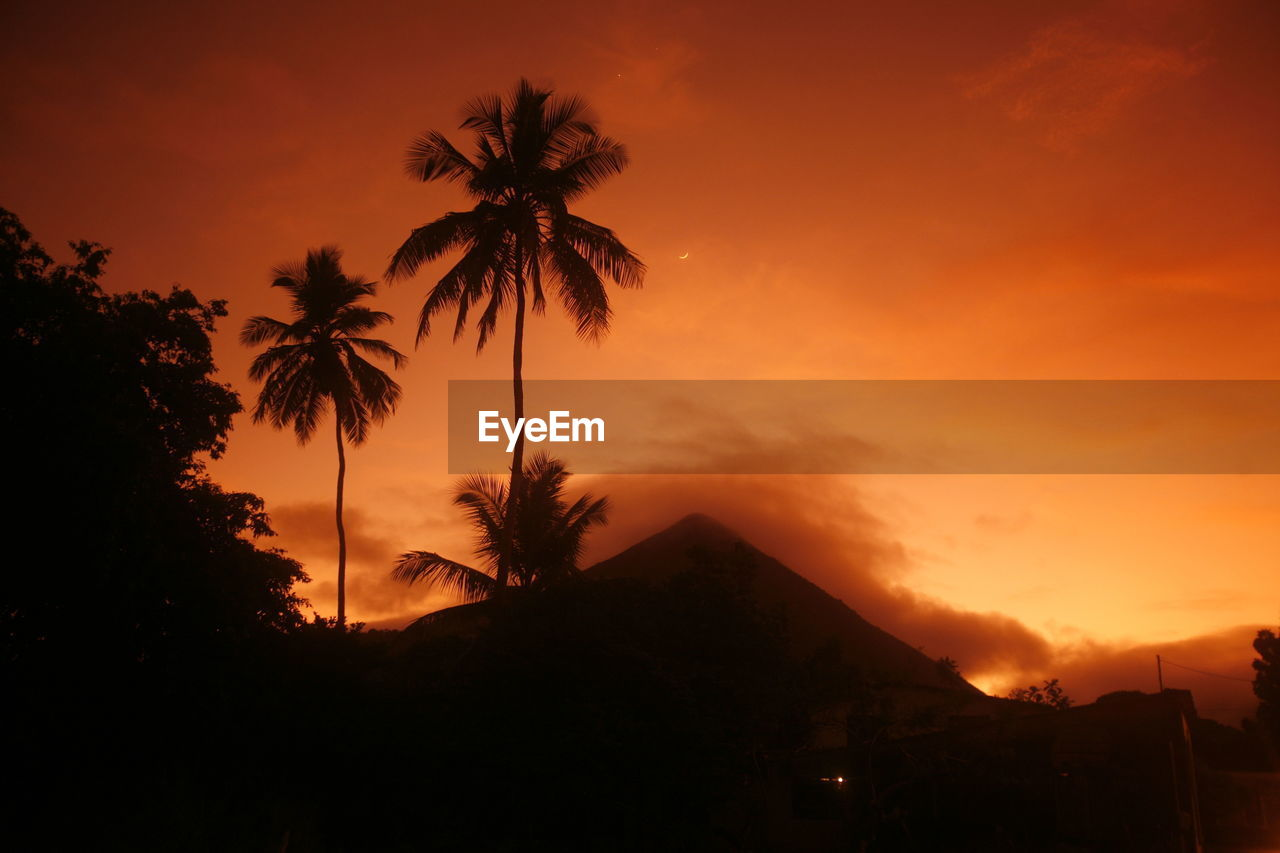 Low Angle View Of Silhouette Coconut Palm Trees By Mountain Against Sky During Sunset
