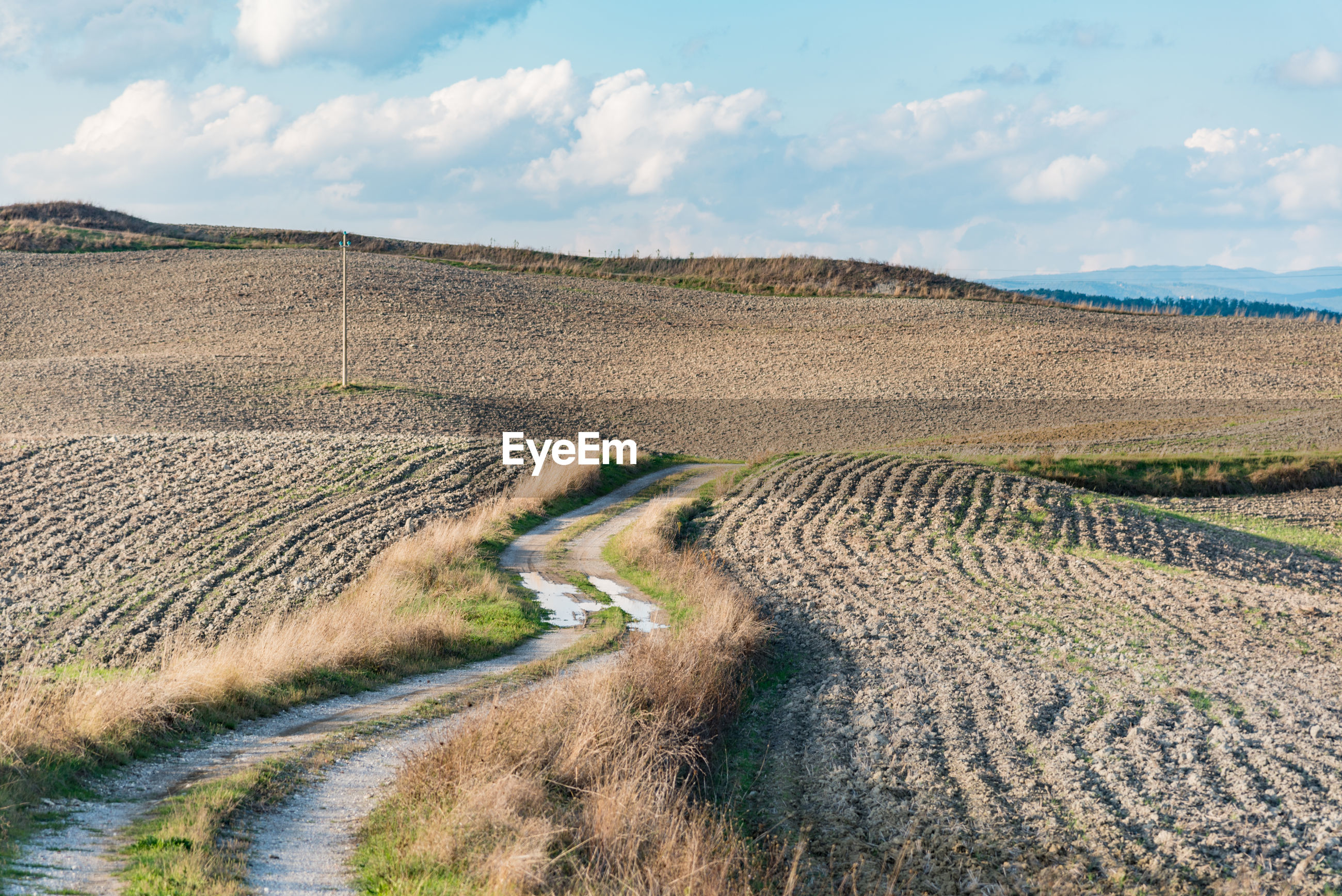 VIEW OF DIRT ROAD ALONG LANDSCAPE