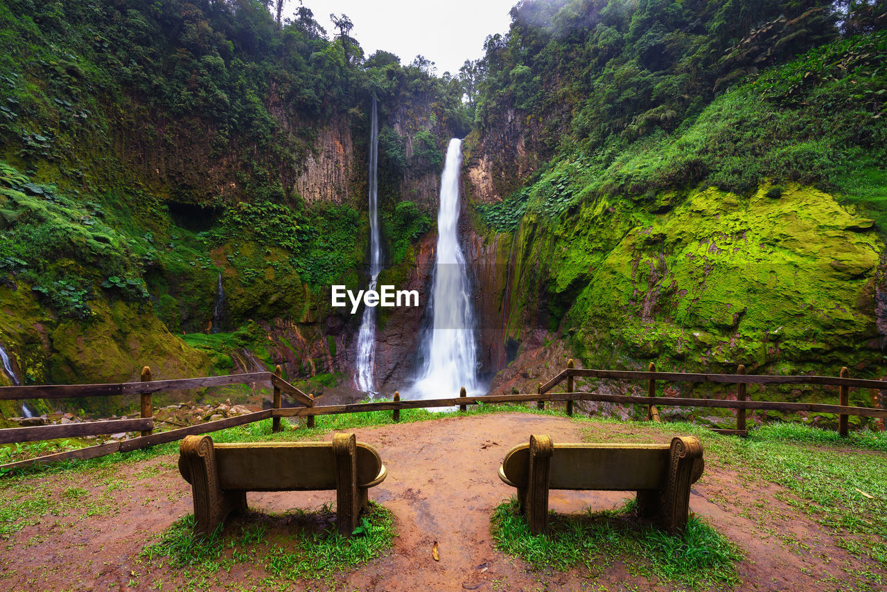 SCENIC VIEW OF WATERFALL AGAINST TREES