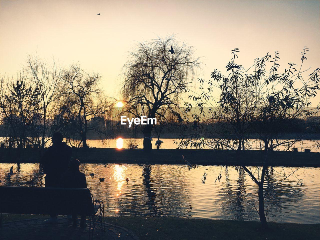 Silhouette of birds flying over lake