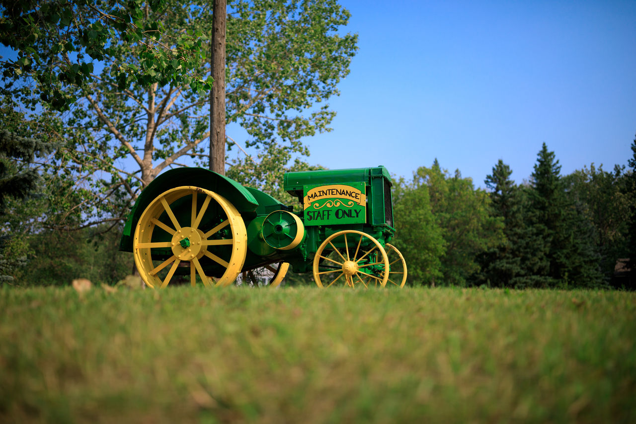 plant, land, tree, field, green color, grass, nature, wheel, day, sky, no people, growth, outdoors, transportation, clear sky, cart, land vehicle, blue, wagon wheel