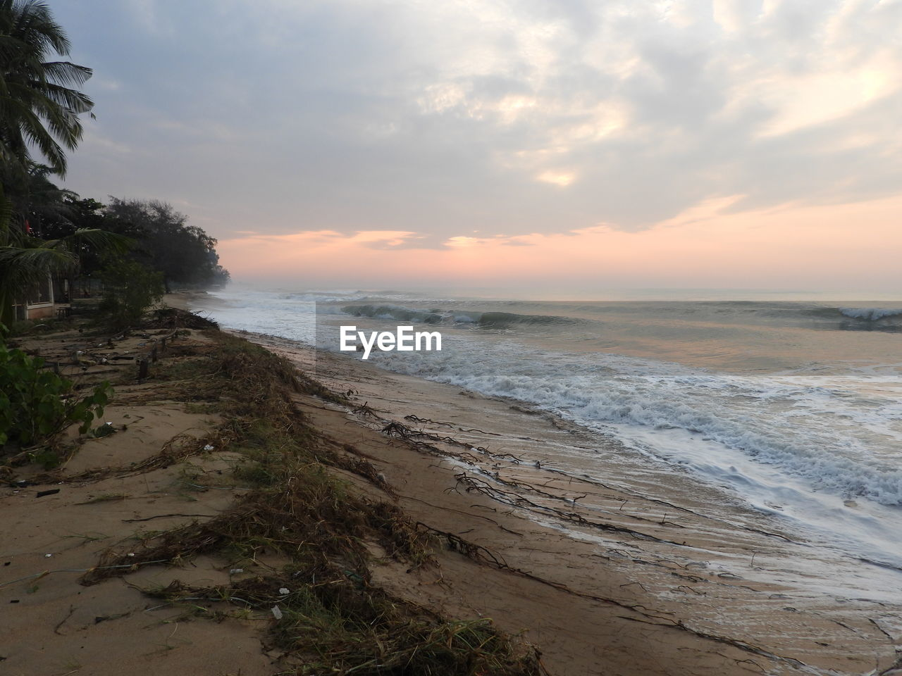 sky, sea, water, beach, land, sunset, beauty in nature, scenics - nature, cloud - sky, tranquility, horizon over water, tranquil scene, nature, horizon, no people, idyllic, plant, non-urban scene, sand, outdoors