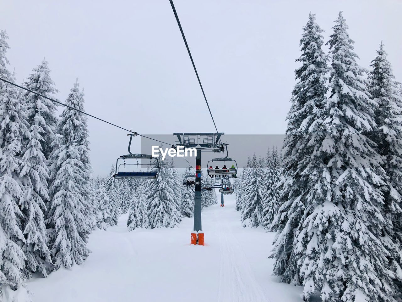 snow, winter, cold temperature, tree, cable car, plant, covering, nature, white color, transportation, ski lift, overhead cable car, beauty in nature, day, sky, no people, scenics - nature, cable, land, outdoors, snowcapped mountain