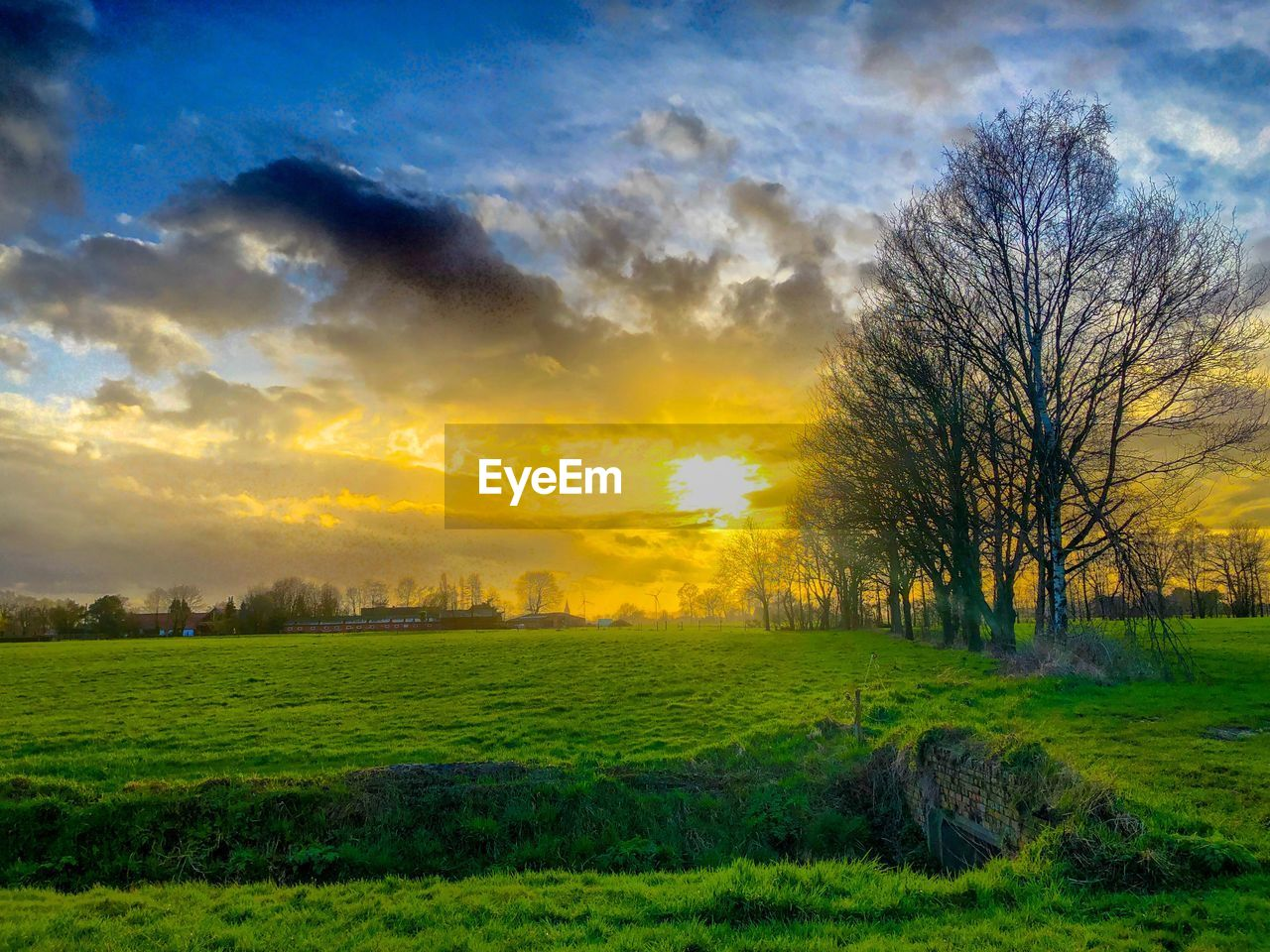 sky, cloud - sky, scenics - nature, tranquil scene, tree, landscape, beauty in nature, plant, tranquility, grass, environment, sunset, nature, land, field, no people, non-urban scene, bare tree, idyllic, green color, sun, outdoors
