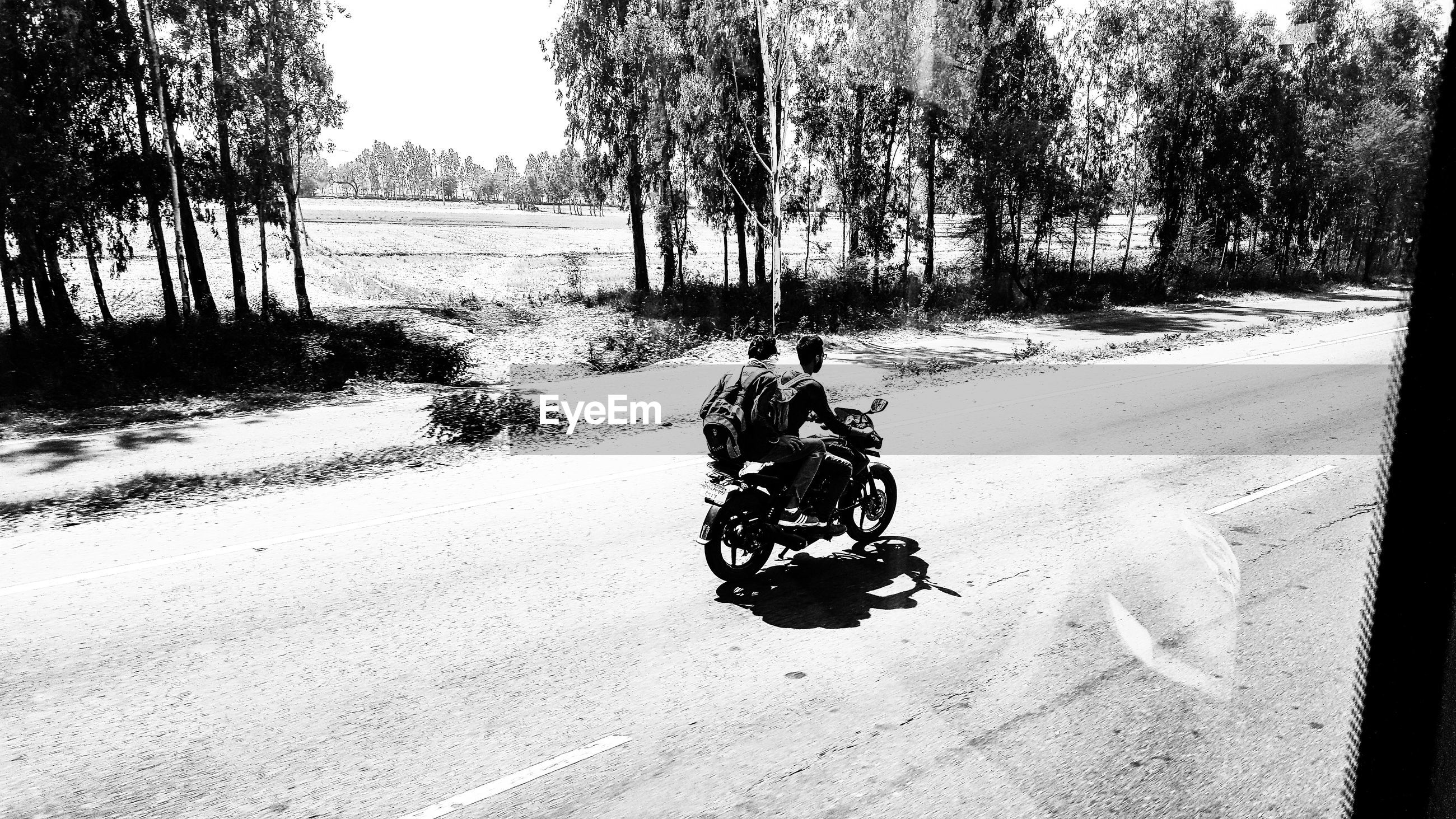 Friends riding motorcycle on road against trees