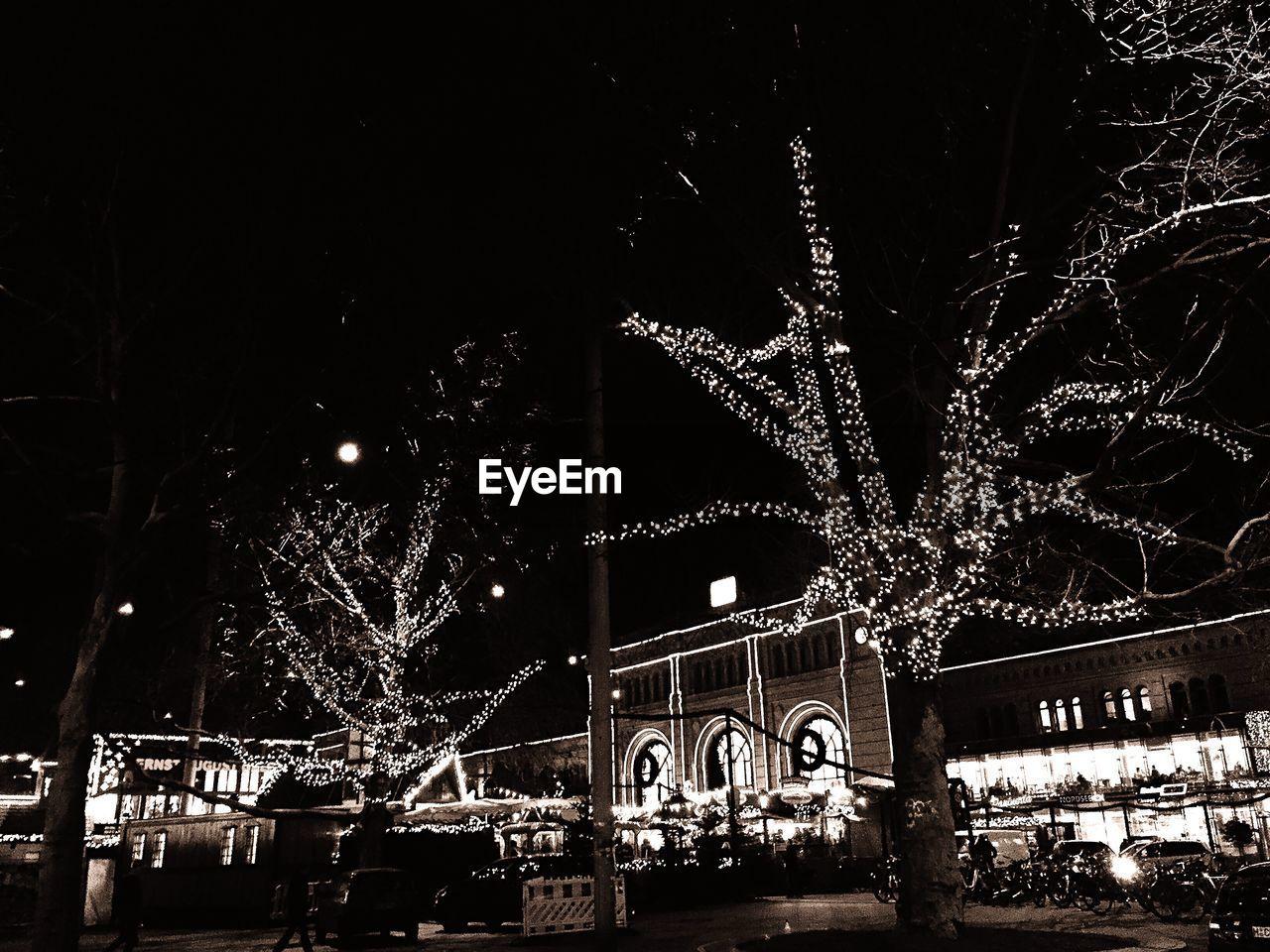 Illuminated trees against built structures