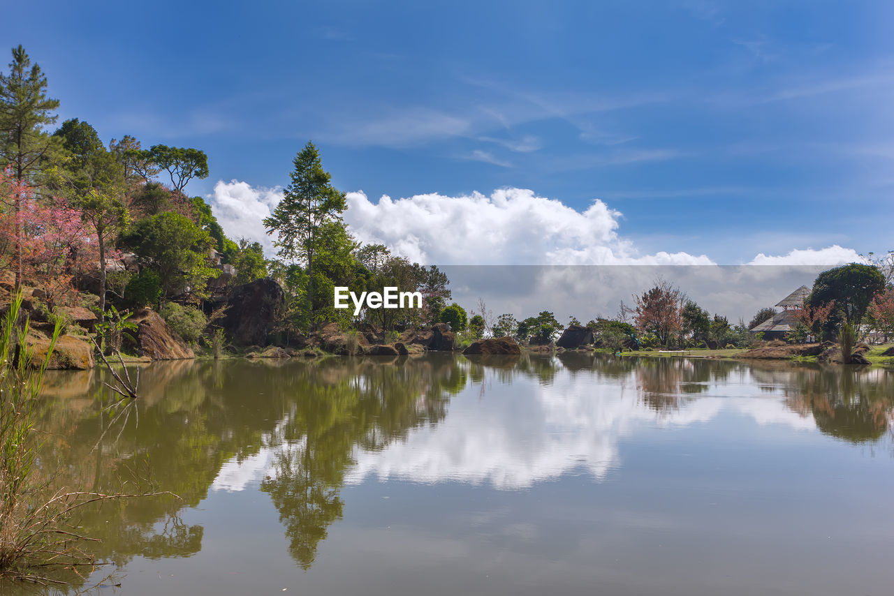 reflection, water, sky, beauty in nature, cloud - sky, tranquility, scenics - nature, tranquil scene, lake, tree, waterfront, plant, nature, no people, day, non-urban scene, outdoors, idyllic, environment