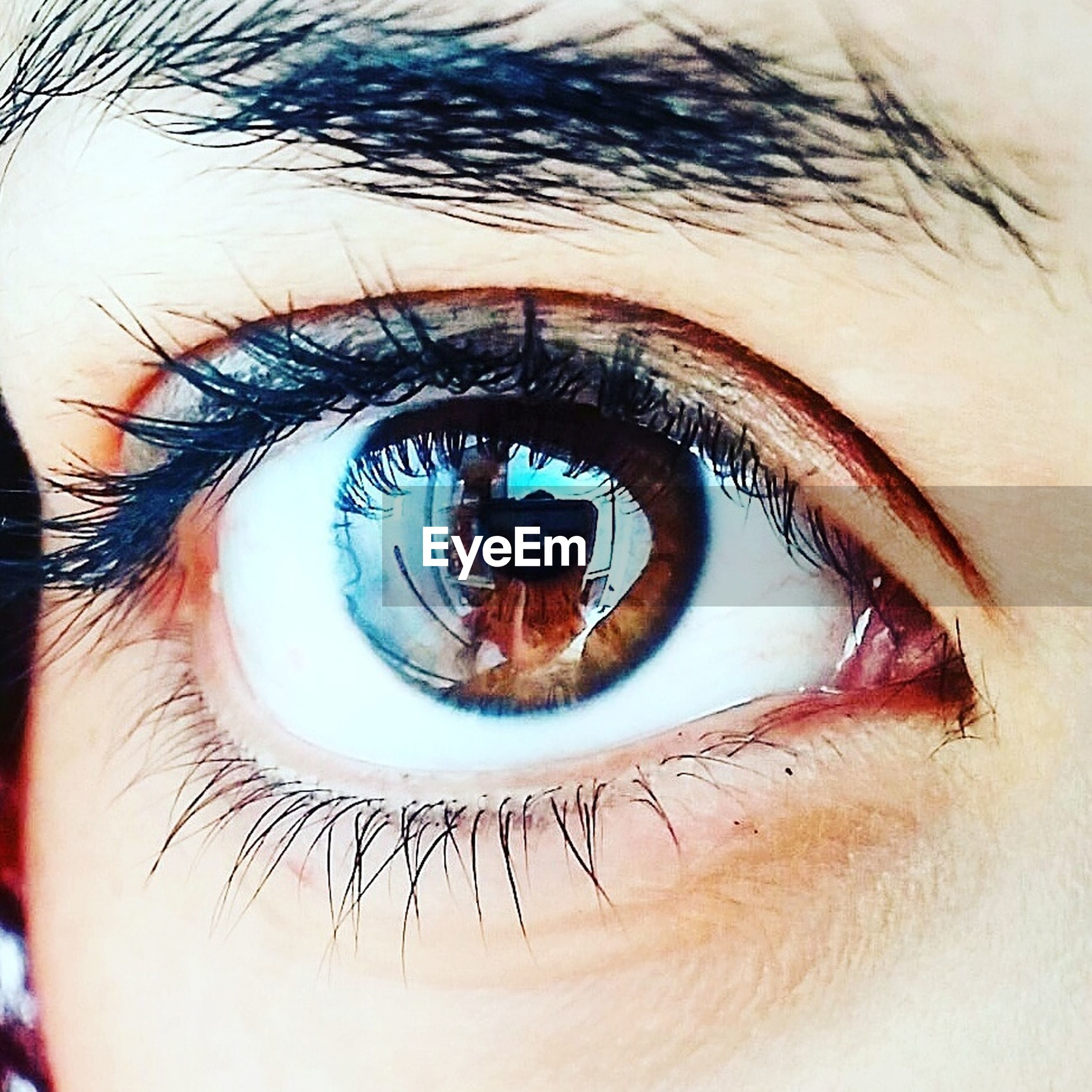 human eye, eyelash, human body part, eyesight, sensory perception, real people, eyeball, looking at camera, iris - eye, close-up, one person, macro, portrait, vision, eyelid, iris, day, outdoors, eyebrow, people