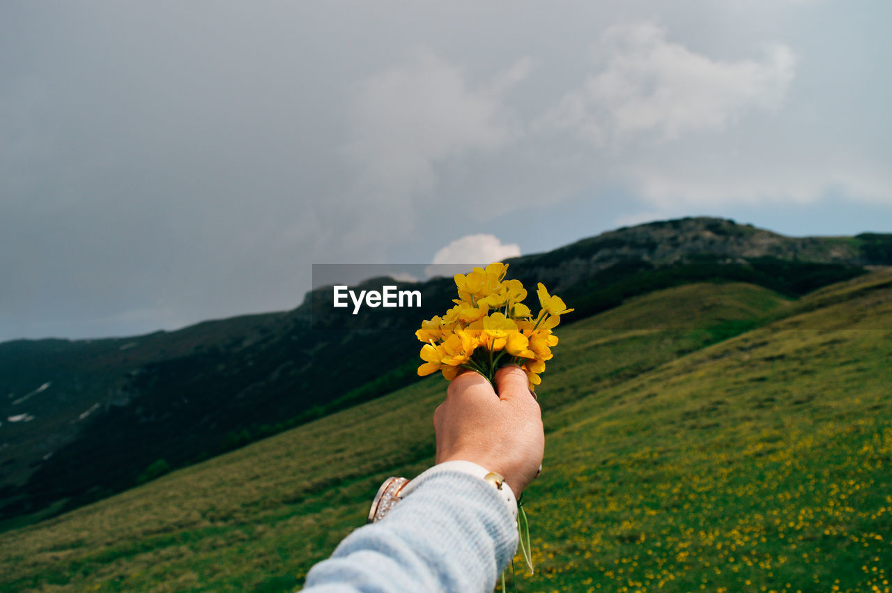 Cropped Hand Of Person Holding Yellow Flowers On Mountain