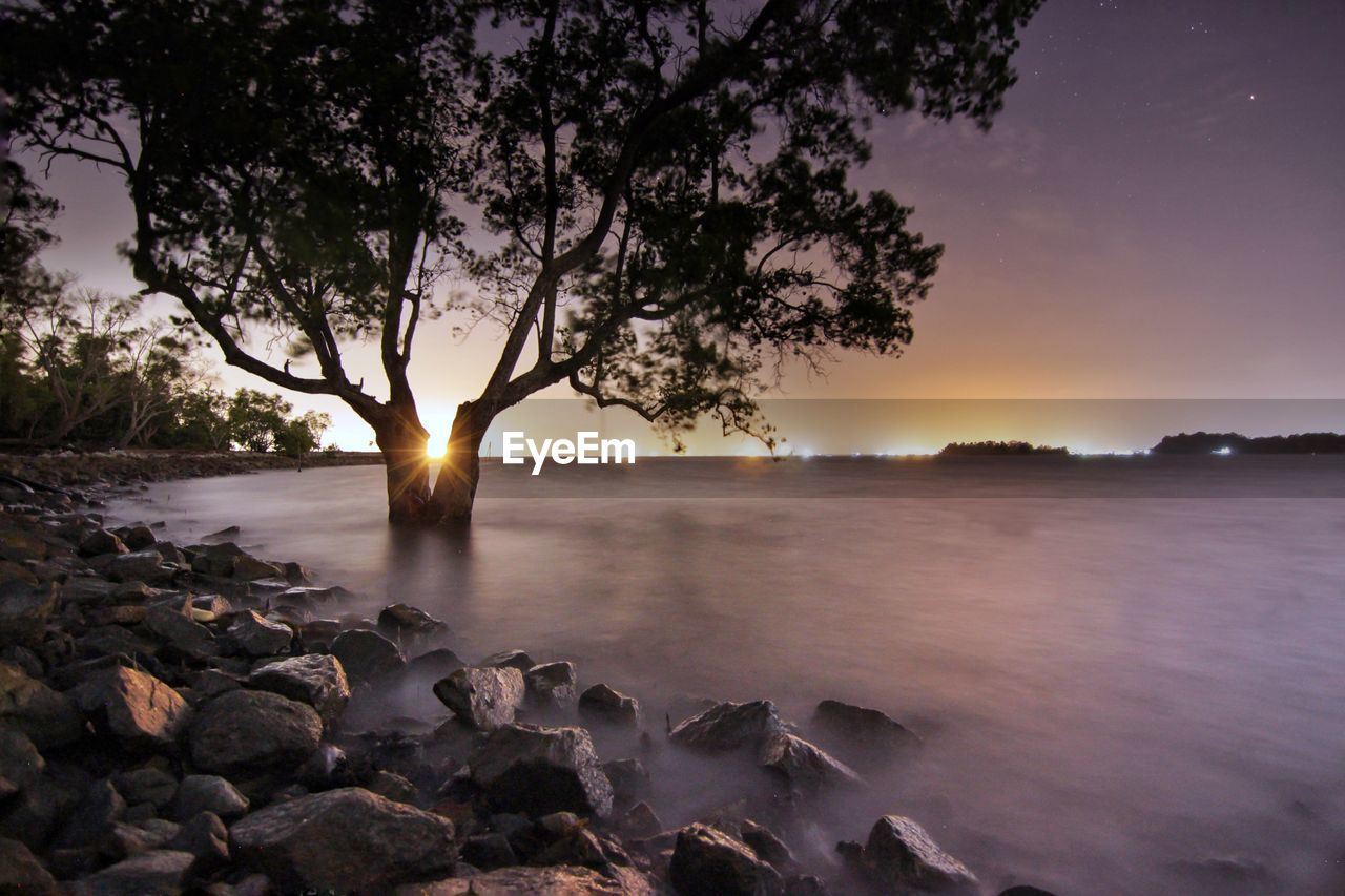 sunset, beauty in nature, nature, tree, water, scenics, sky, tranquil scene, sun, no people, tranquility, sea, outdoors, day