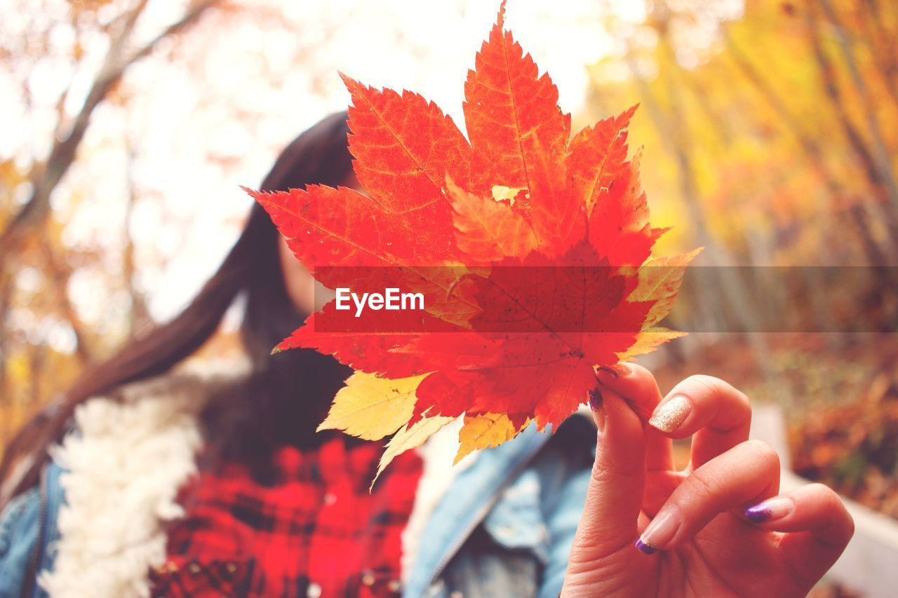 Close-up of woman covering face with maple leaves