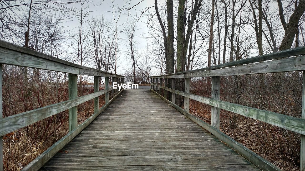 Empty boardwalk amidst bare trees at forest