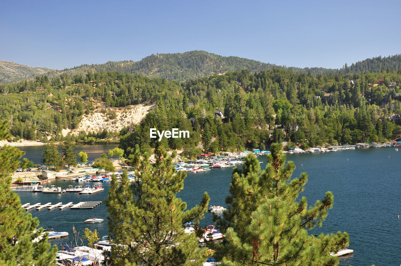 High angle view of lake and trees against clear sky