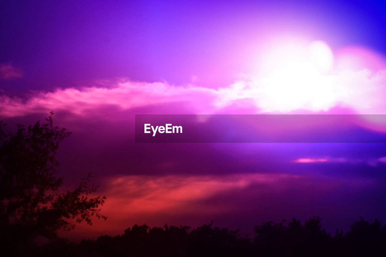 sky, beauty in nature, cloud - sky, tree, plant, tranquility, tranquil scene, silhouette, scenics - nature, low angle view, sunset, nature, no people, growth, outdoors, idyllic, dramatic sky, pink color, night, purple, romantic sky