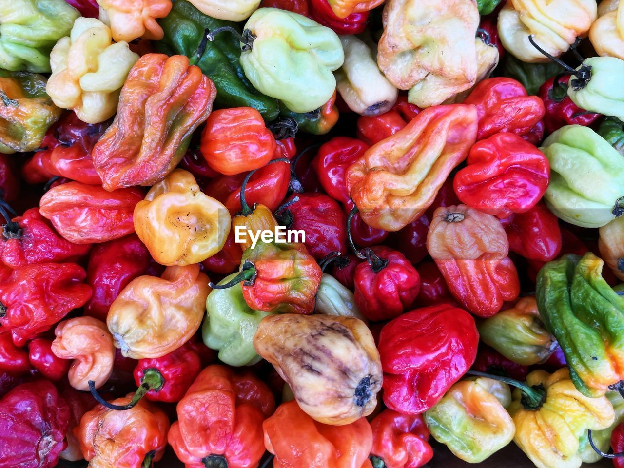 FULL FRAME SHOT OF FRUITS AND VEGETABLES