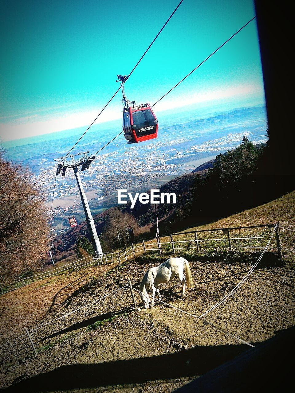 transportation, mode of transport, cable, nature, day, overhead cable car, sky, ski lift, outdoors, no people, water, beauty in nature, animal themes, mammal