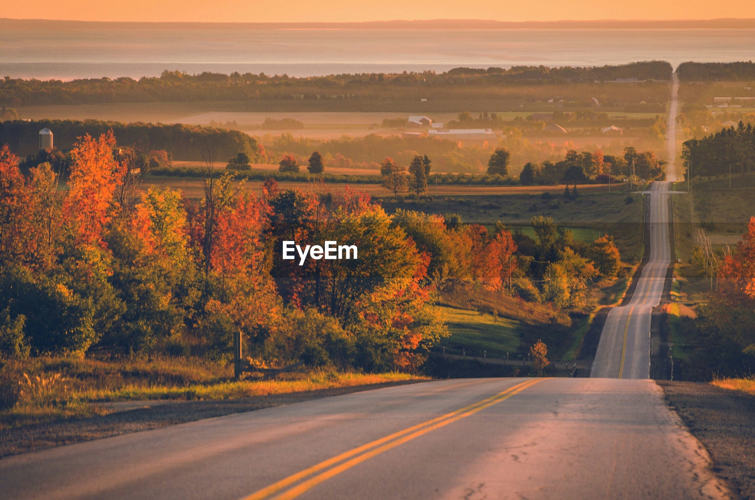 SCENIC VIEW OF ROAD DURING AUTUMN
