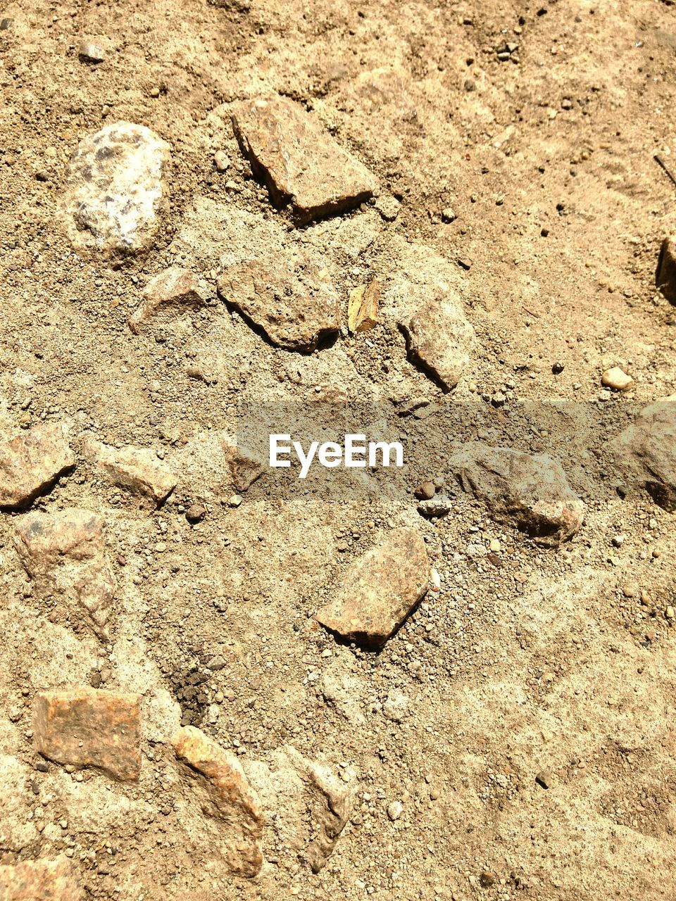 backgrounds, no people, nature, full frame, day, fossil, outdoors, pattern, textured, arid climate, close-up