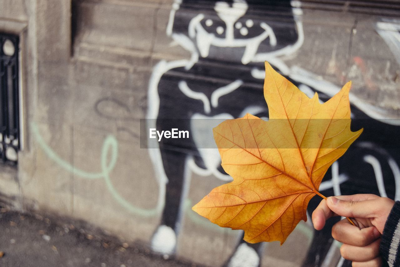 autumn, leaf, one person, plant part, graffiti, day, focus on foreground, close-up, human body part, city, creativity, real people, change, outdoors, hand, human hand, unrecognizable person, nature, street, maple leaf, finger, leaves