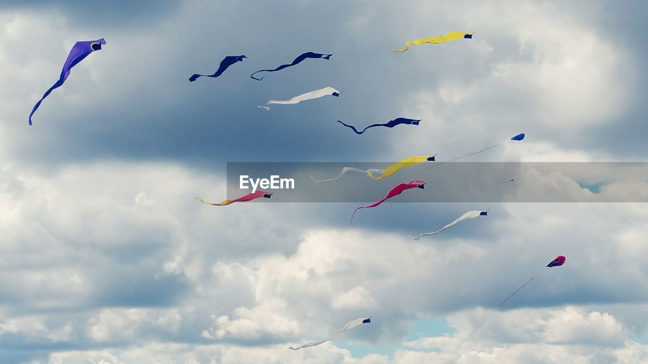 flying, mid-air, cloud - sky, sky, bird, low angle view, day, nature, outdoors, no people, kite - toy, motion, beauty in nature, animal themes