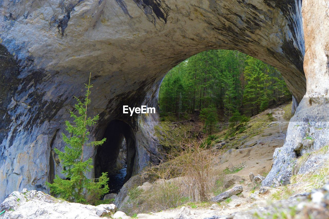 arch, rock, nature, day, architecture, no people, solid, rock - object, tunnel, rock formation, plant, outdoors, tree, built structure, cave, bridge, land, direction, the way forward, bridge - man made structure, arch bridge, arched