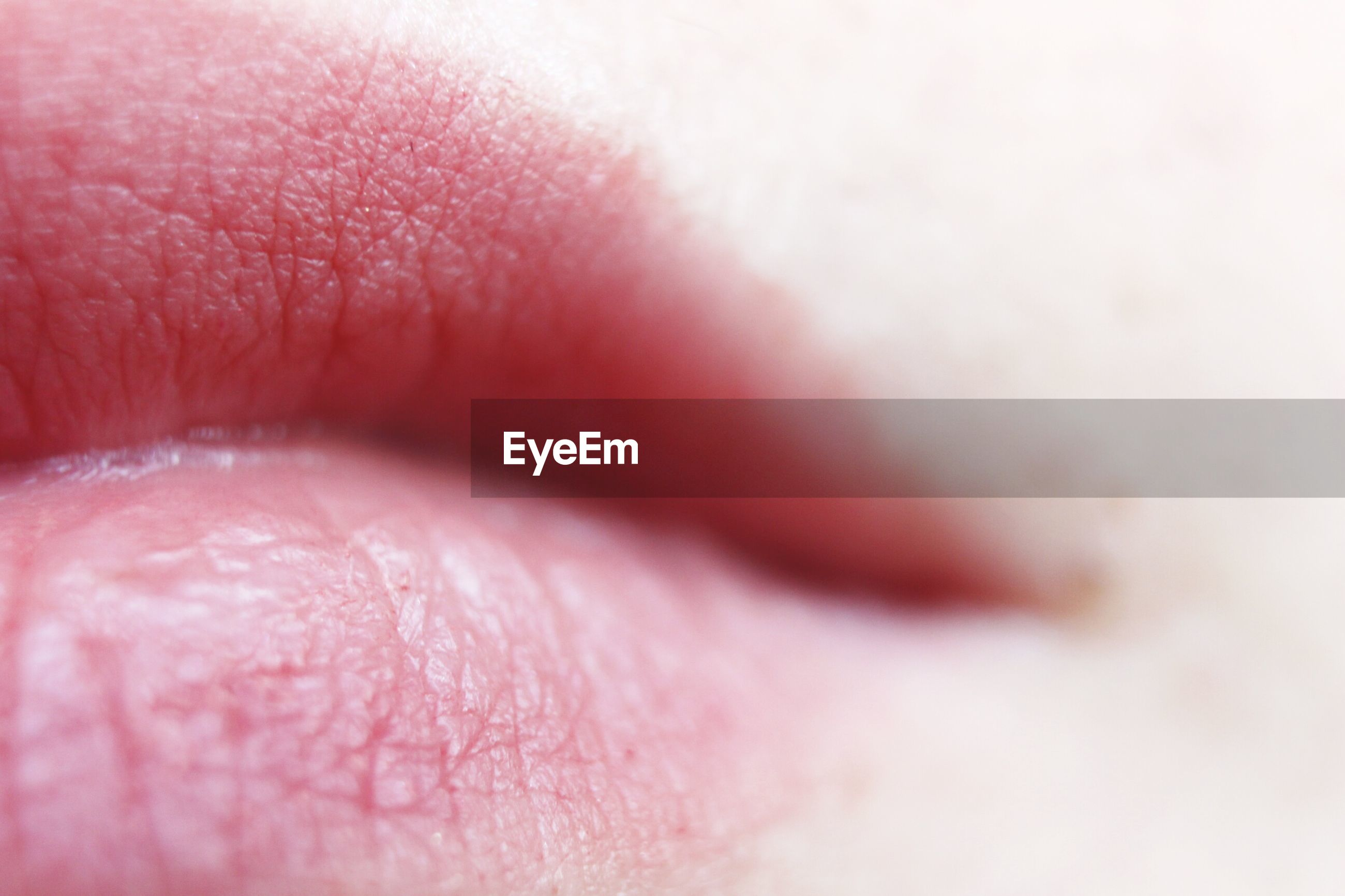 Close-up of human lips