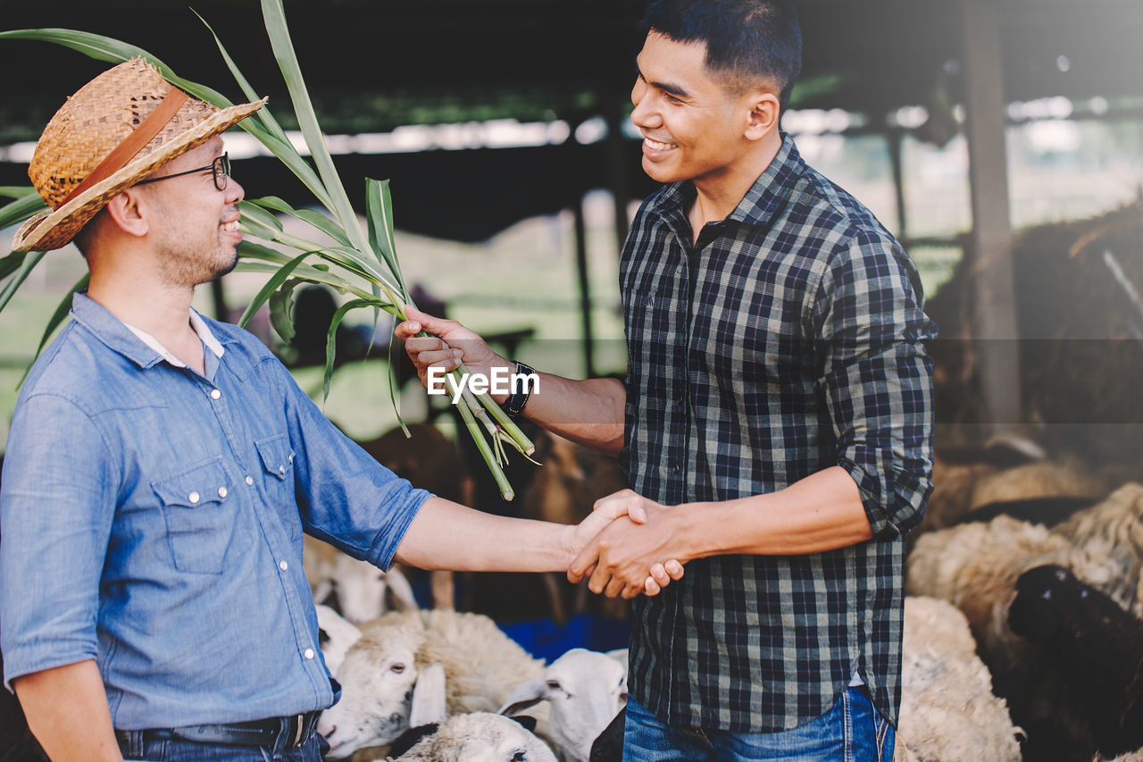 Financial advisor shaking hand with farmer at farm