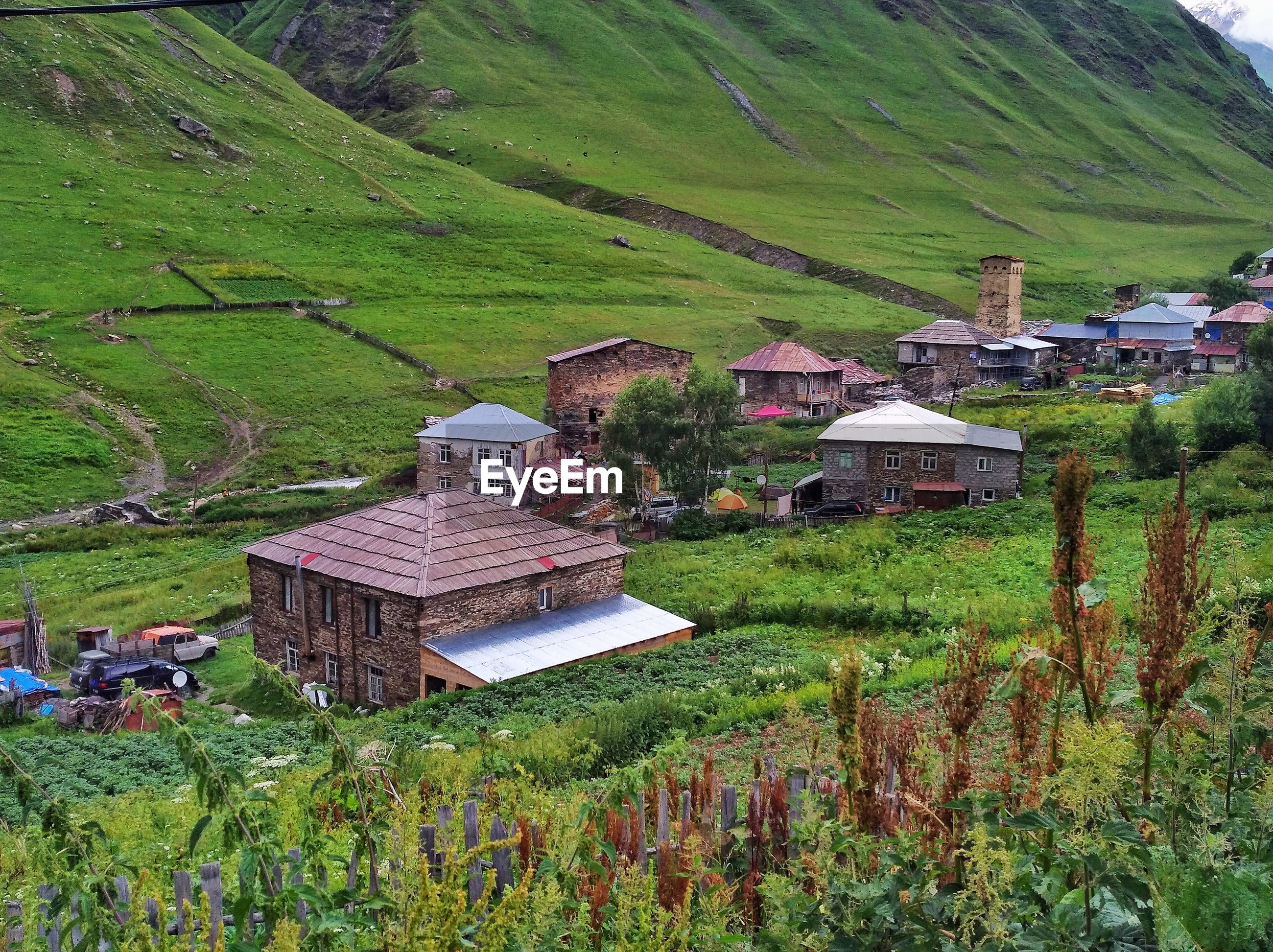 SCENIC VIEW OF VILLAGE ON FIELD BY HOUSES