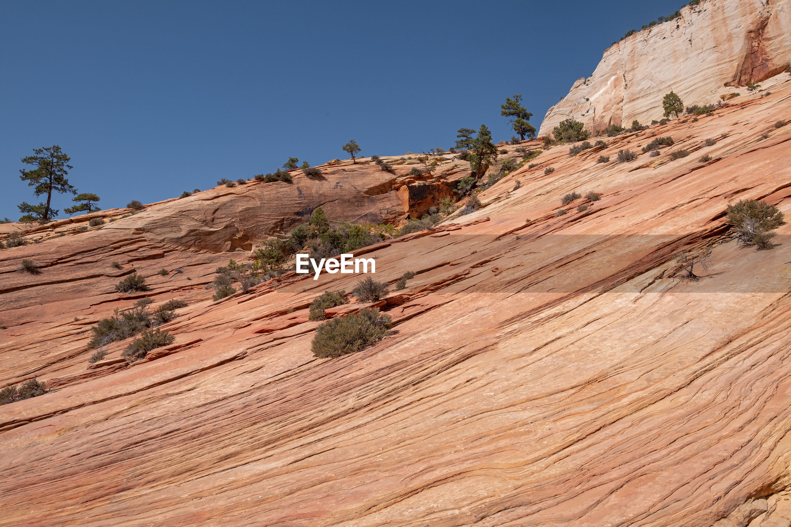 Red rock formation in zion national park, utah usa