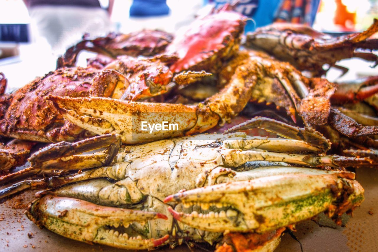 seafood, food, food and drink, freshness, healthy eating, close-up, lobster, focus on foreground, no people, cooked, serving size, market, ready-to-eat, squid, indoors, day