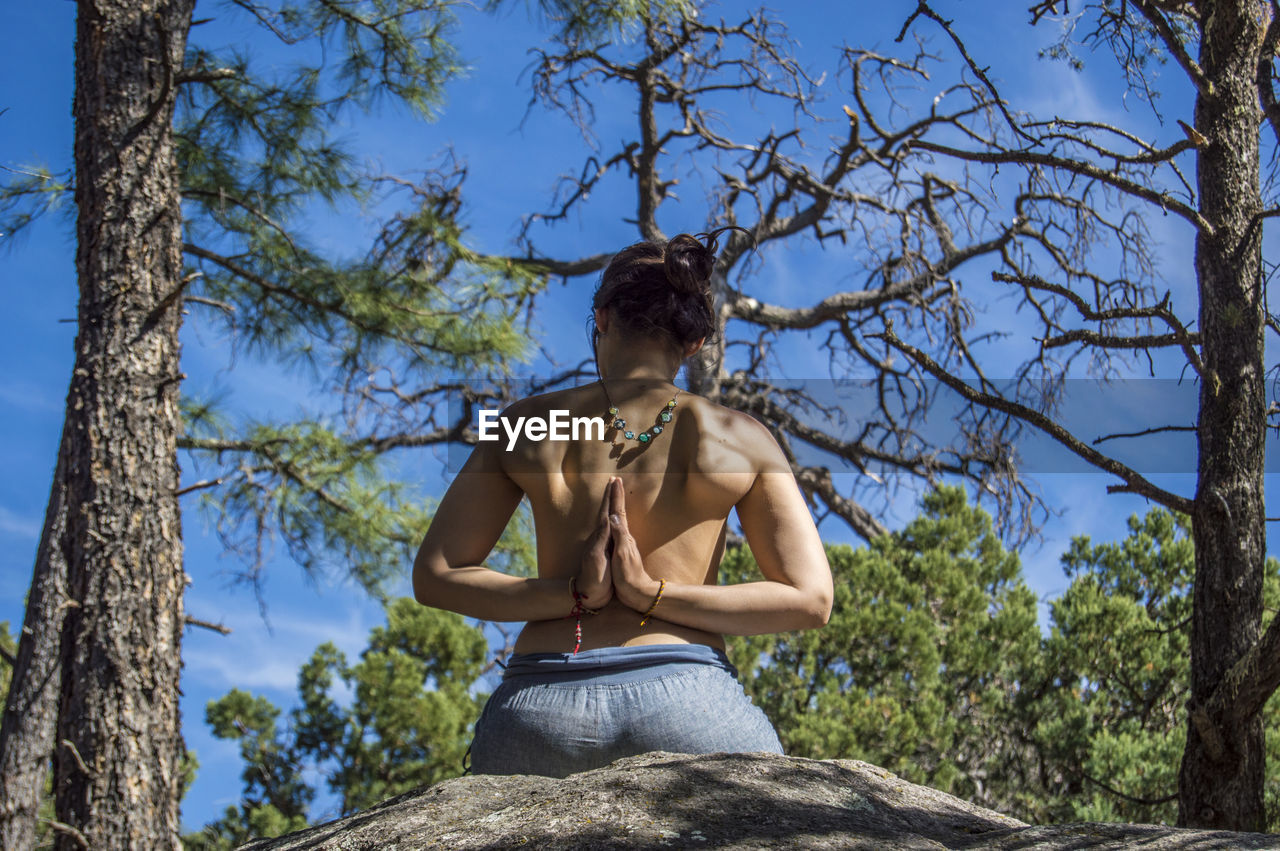 Low Angle View Of Woman Doing Yoga In Forest