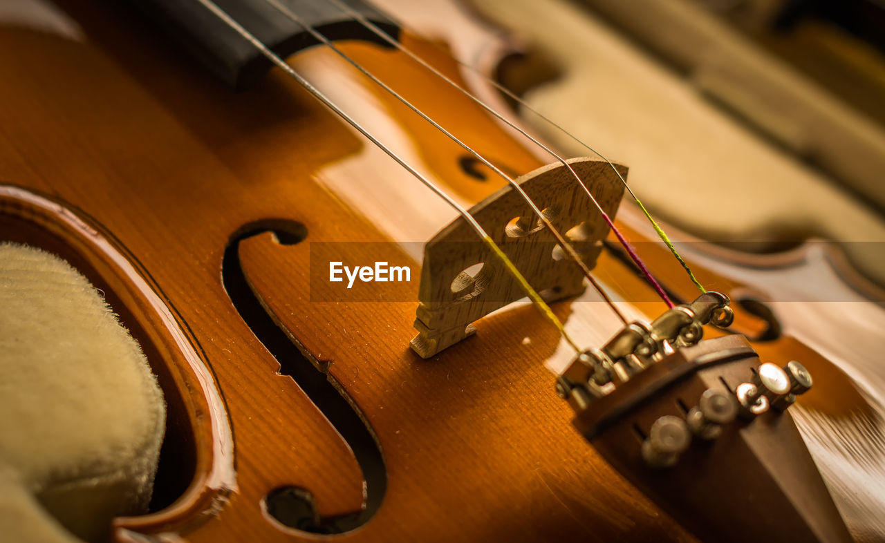 music, musical instrument, musical instrument string, arts culture and entertainment, string instrument, musical equipment, wood - material, woodwind instrument, guitar, violin, indoors, no people, fretboard, close-up, classical music, electric guitar, day