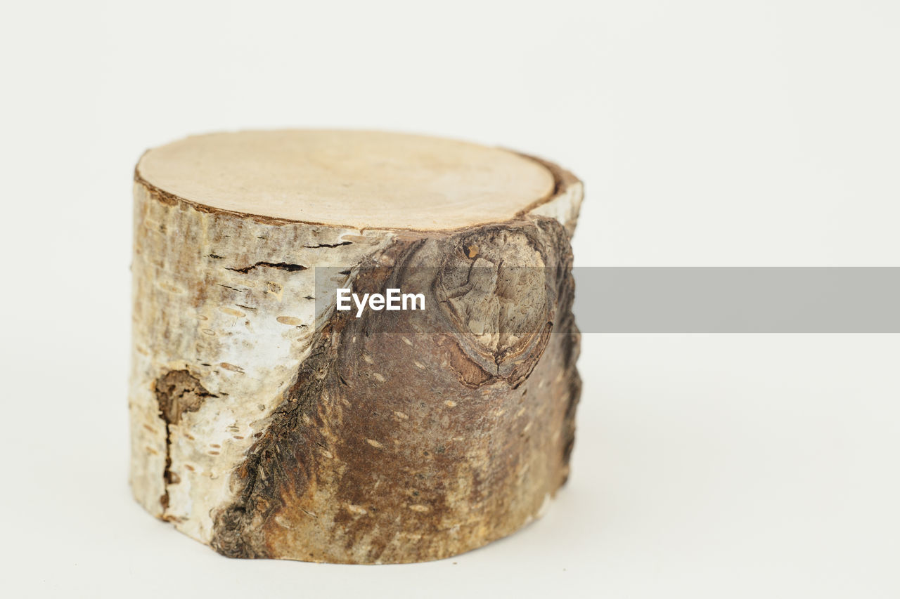 High angle view of tree stump over white background