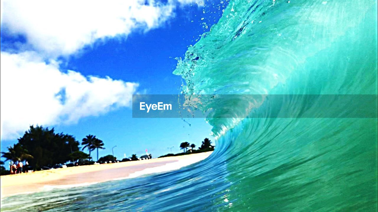 sea, sky, beach, water, outdoors, nature, tree, vacations, day, palm tree, beauty in nature, wave, no people