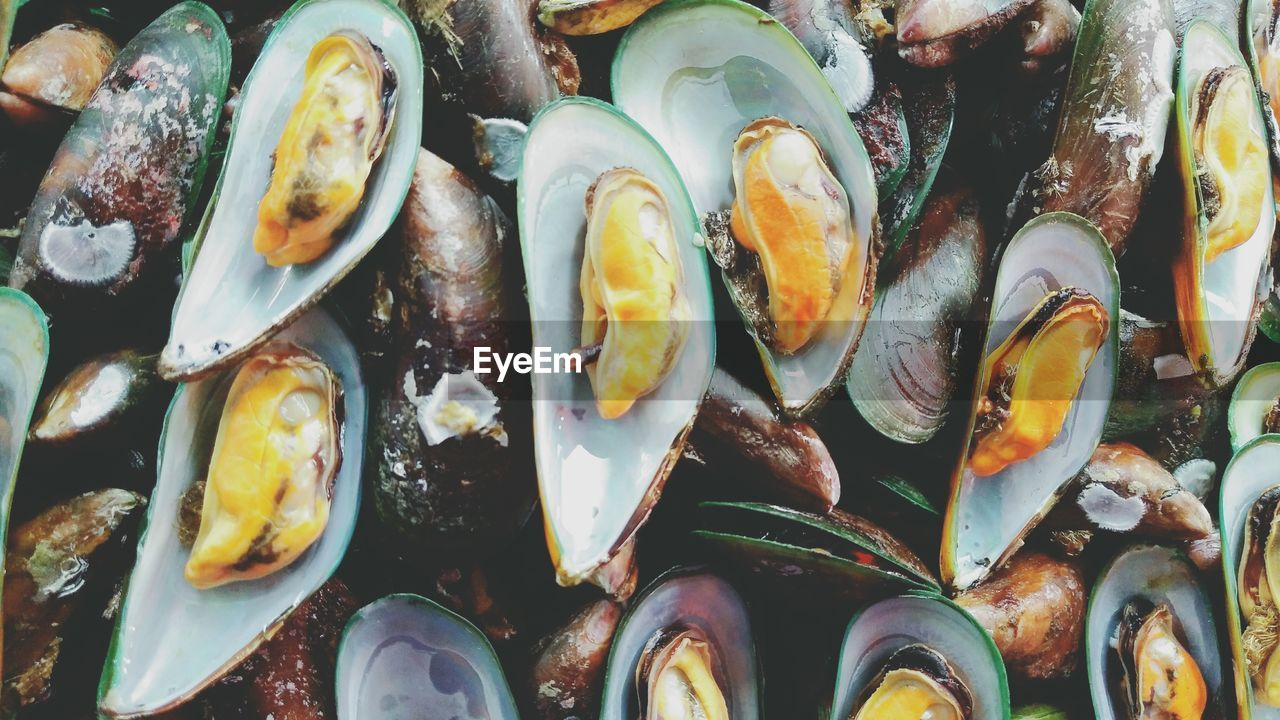 Full Frame Shot Of Mussels For Sale At Fish Market