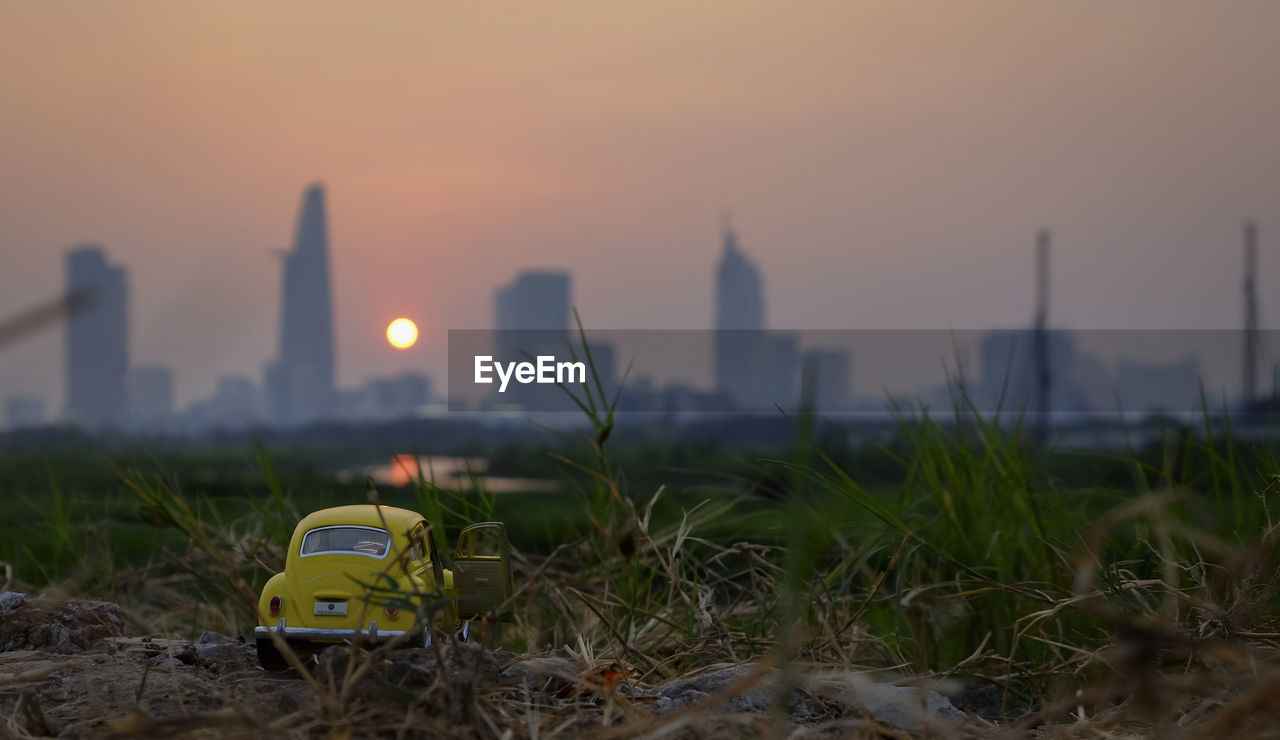 sunset, no people, outdoors, architecture, sky, growth, built structure, grass, skyscraper, close-up, building exterior, nature, day, city